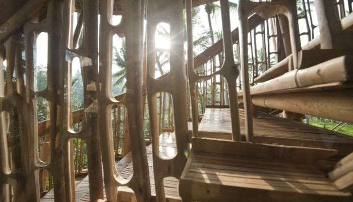 Будинок з бамбука на Балі (15 фото)