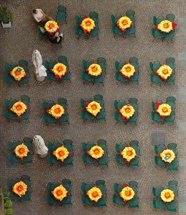 Ідентичні сутності та предмети (37 фото)
