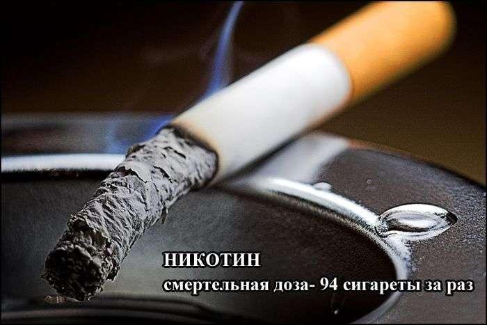Дози, які можуть бути смертельними для людини (9 фото)