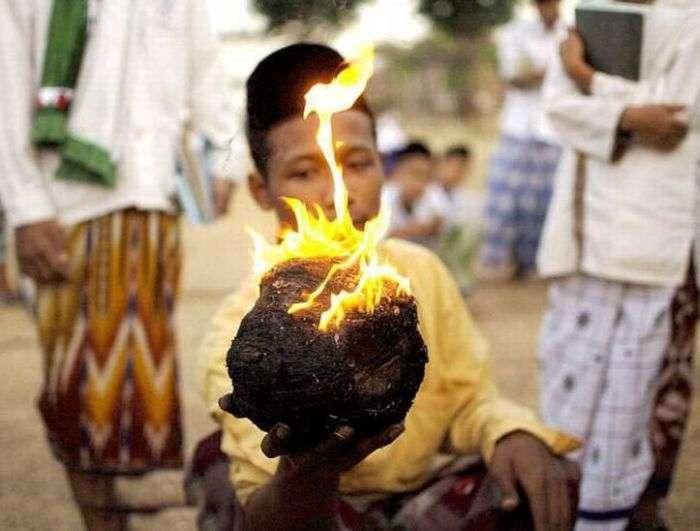 Що можна зробити з палаючим кокосом (13 фото)
