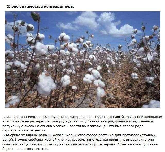 ТОП-10 контрацептивів з минулого (10 фото)
