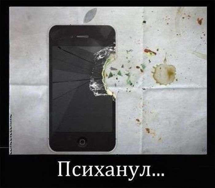 У пориві гніву (40 фото)