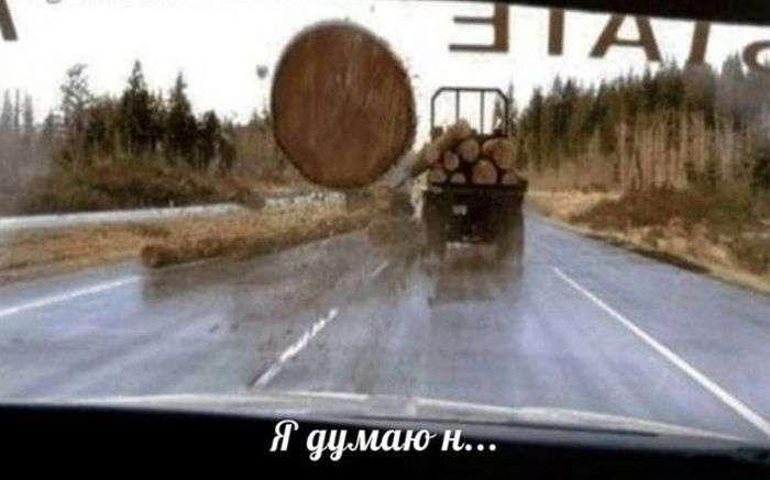 Смішні фотографії в стилі: Я думаю, треба тікати! (27 фото)