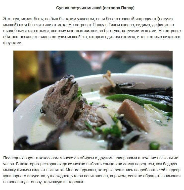 Найнезвичайніші супи з різних куточків нашої планети (11 фото)