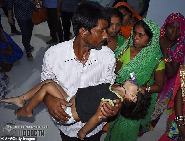 В Индии из-за фруктов личи умерло уже 152 ребенка Тайны и мифы