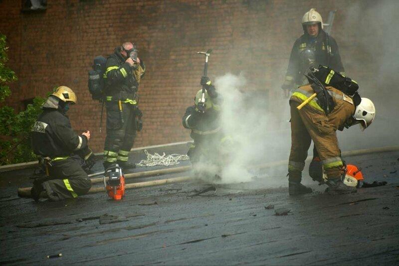 Питерские пожарные спасли 300 кошек и семь собак из горящего приюта Интересное