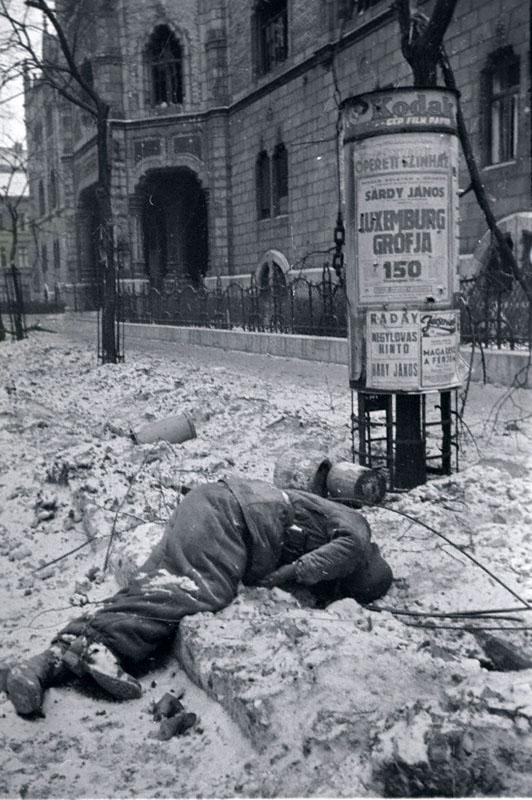 Самая кровавая бойня за всю войну. Попытка прорыва немцев из Будапешта Будапешт,Великая Отечественная война,история,СССР