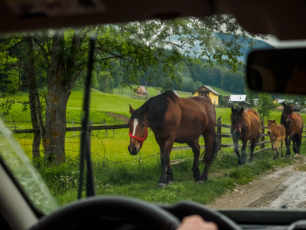 Пугающая Трансильвания Европа,Карпаты,пейзажи,путешествия